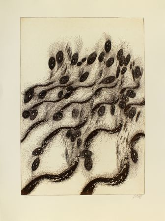 Etching And Aquatint Zush - Vovlusos