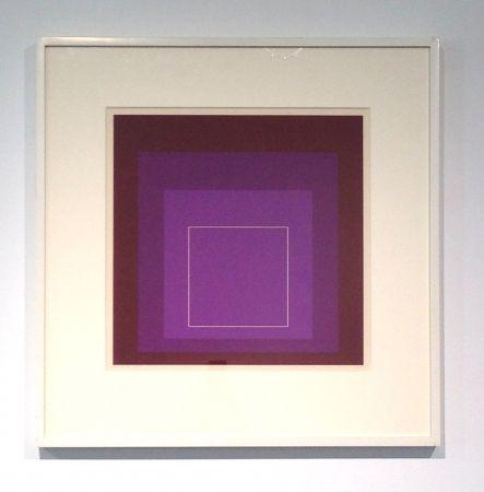 Lithograph Albers - White Line Square, XI