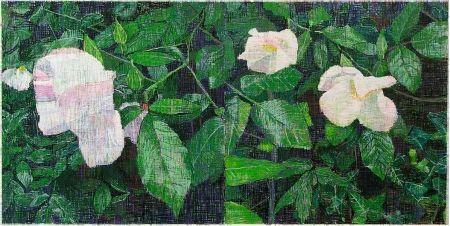 Multiple Bartlett - White Roses