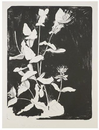 Lithograph Dine - Wildflowers in New York II