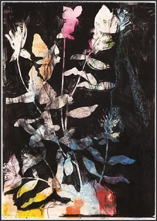 Lithograph Dine - Wildflowers in the Night