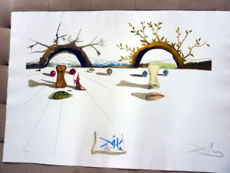 Etching Dali - Winter and Summer