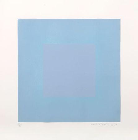 Aquatint Anuszkiewicz - Winter Suite (Light Blue with Light Blue)