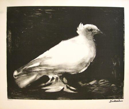 Lithograph Picasso - XXème anniversaire, mouvement de la paix (before lettering)