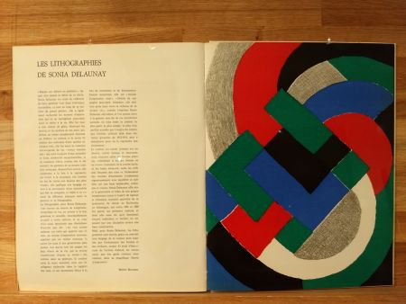 Illustrated Book Delaunay - Xxe No32