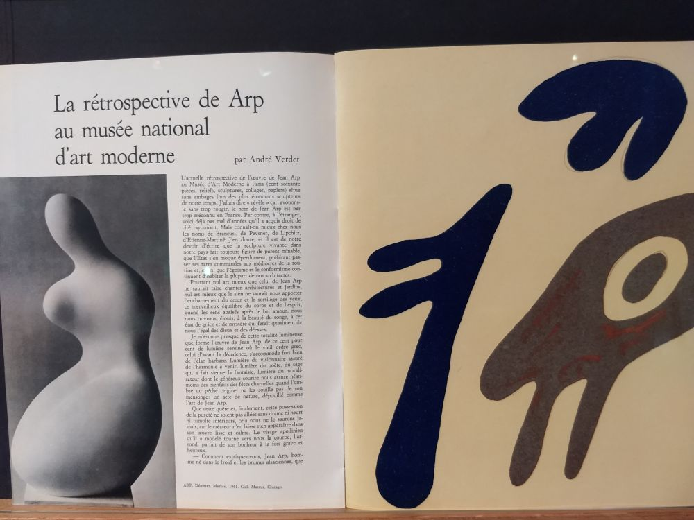 Illustrated Book Arp - Xxe No 19