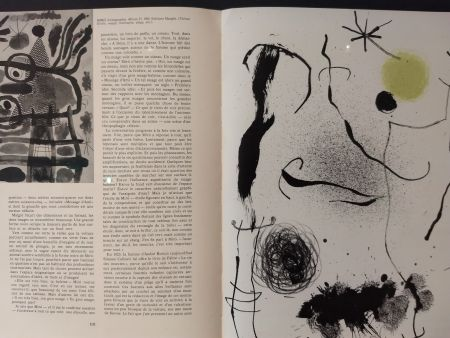 Illustrated Book Miró - XXE No 24