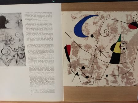 Illustrated Book Miró - Xxe No 8