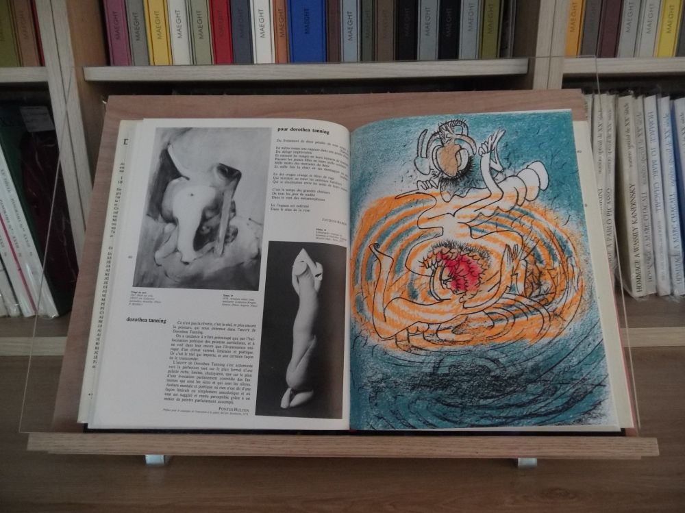 Illustrated Book Matta - Xxe Tanning