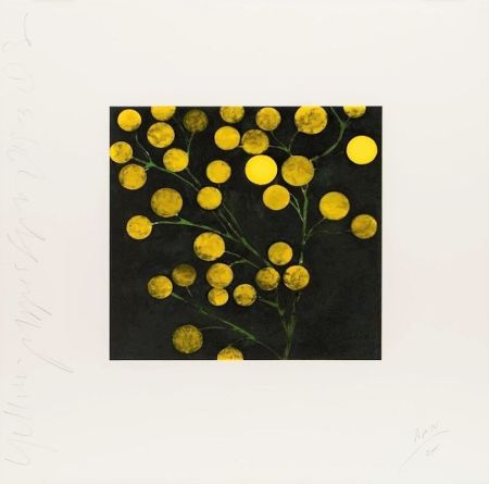 Lithograph Sultan - Yellow Peppers